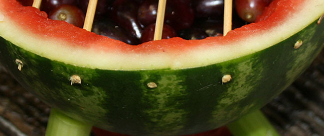 Watermelon Grill Trimmed Grate Ends